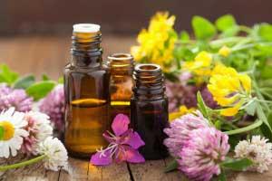 Какие масла можно использовать для лечения волос?